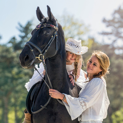 Fries paard en baasjes