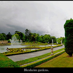 Blenheim19