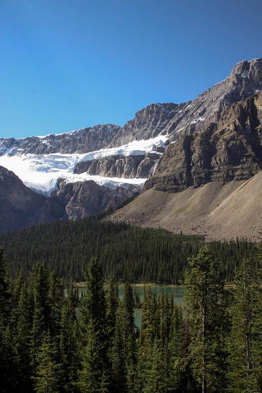 Crowfoot Glacier - Crowfoot glacier langs de Icefields Parkway