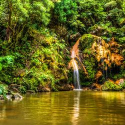 waterval Caldeira Velha