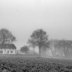 Mistig Limburg