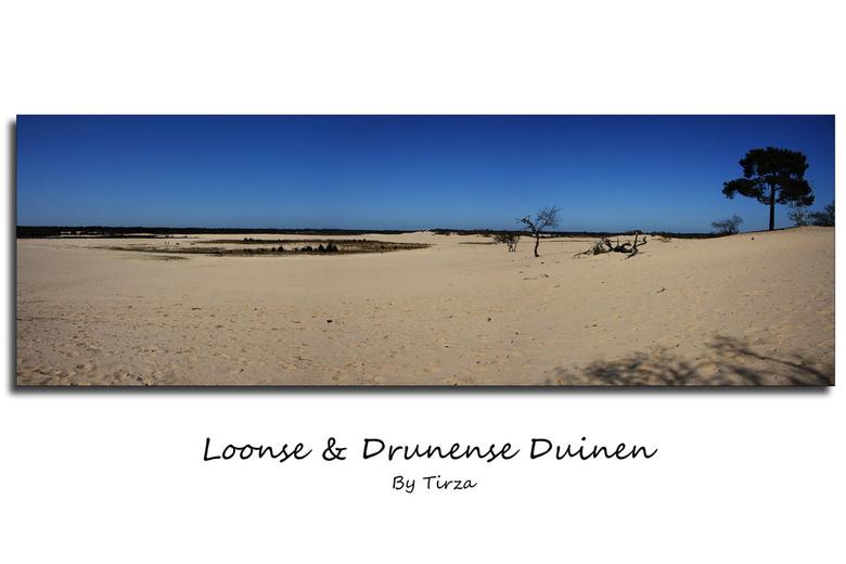 Loonse en Drunense Duinen - Samen met ergodus een keer naar de Loonse en Drunense duinen geweest.<br /> Prachtig weer, waarna we nog even gestrand zi