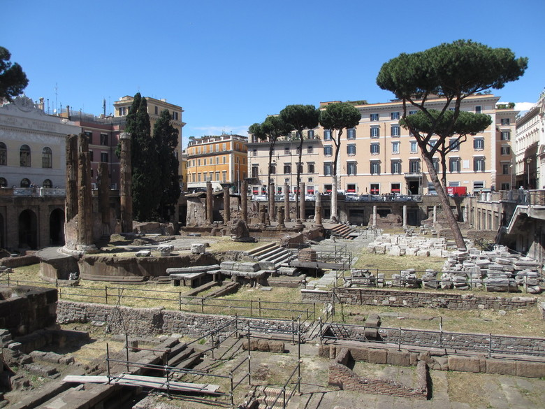 Kattenforum Rome - De zwerfkatten in Rome hebben een rustige plek gevonden tussen de Romeinse restanten van 4 tempels. Vrijwilligers bekommeren zich o