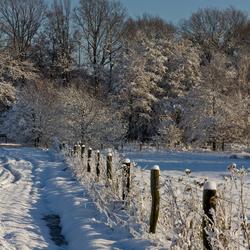Winter van lang geleden