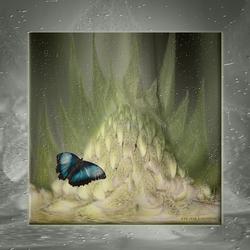 Verdwaalde vlinder...