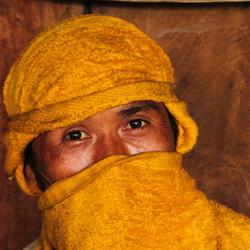 Rijstveldwerker