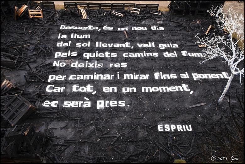 Girona 4 - Dit hoort in ieder geval bij de afdeling kunst.....<br /> Met behulp van Google vertalen uit het Catalaans staat er ongeveer:<br /> <br /