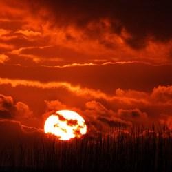 zon met zonnebril
