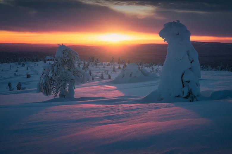 Cotton Candy Sunsets - Naast het Noorderlicht biedt Lapland ook mogelijkheden voor prachtige en droomerige zonsondergangen