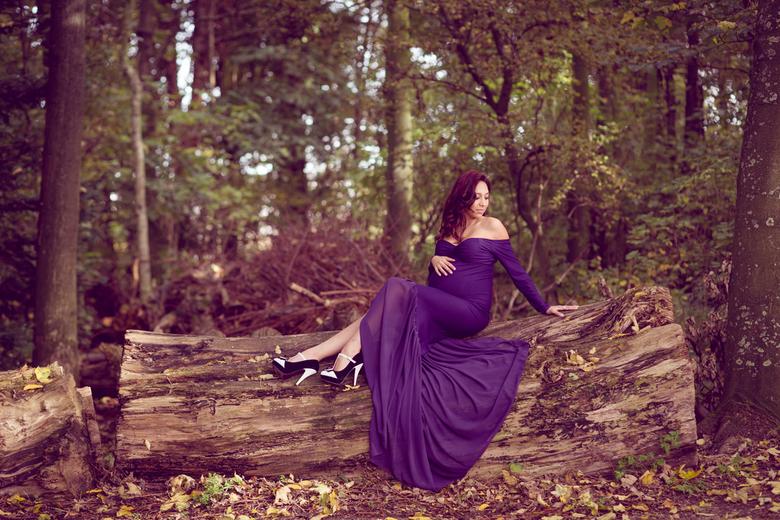 Zwangerschap  -