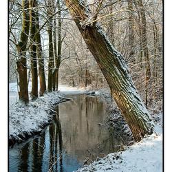 Winters doorkijkje