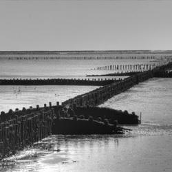 Holwerd op de pier