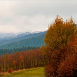 Beierse natuur 17