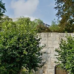 Poort in oude kasteelmuur.
