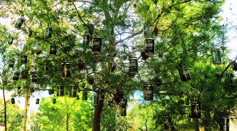 Imagine - Deze boom ontstond tijdens onze vakantie in Kefalonia , zal vast in  menig sight seeing tour worden opgenomen<br />