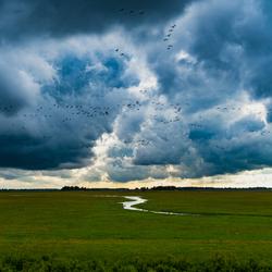 Engwierum, Friesland