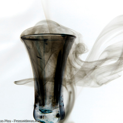 rook experiment 1