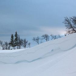Sneeuwrand