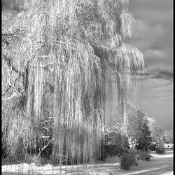winterdrama