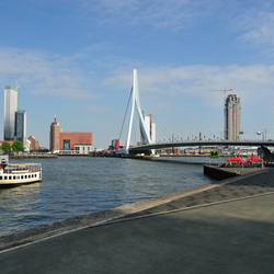 Rotterdam or anywhere