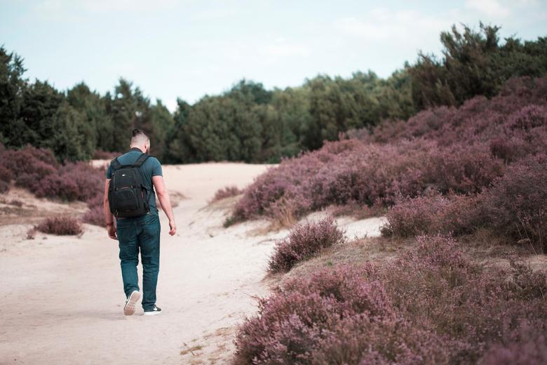 Mantingerzand  - wandeling met de man, in het mooie mantingerzand natuurgebied