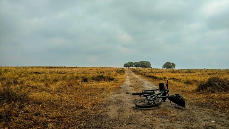 Bikepacking Veluwezoom - TransGelderland: een mini bikepacking avontuur.
