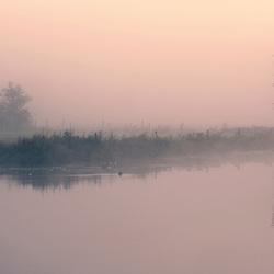 Mistig landschap aan De Linge