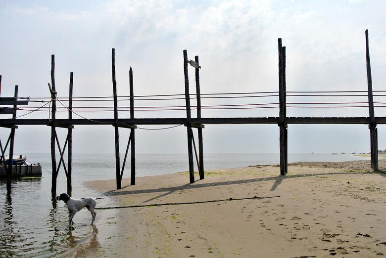 Steiger boot naar Vlieland - Vanaf Texel kan je met de Vriendschap (bootje van Sil) naar Vlieland.