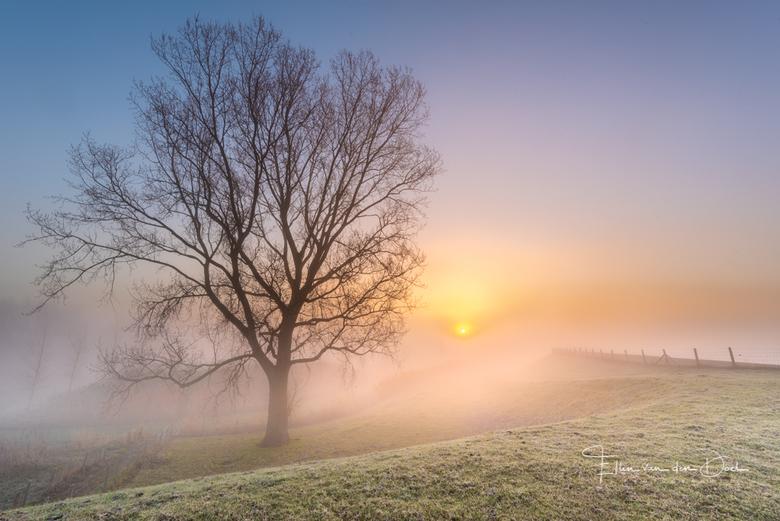 A New Day - Een sfeervolle zonsopkomst bij het kleine dorpje Battenoord.