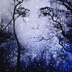 De Nacht Wacht