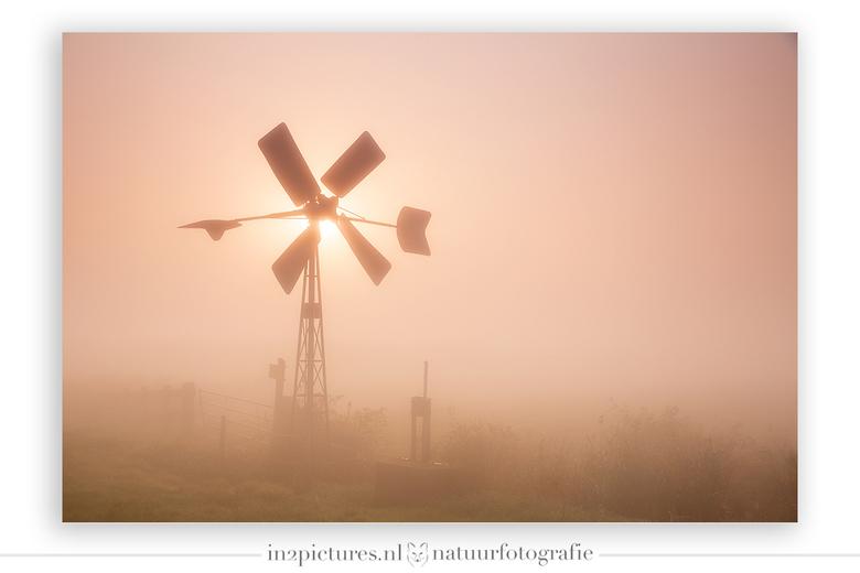 Bosman molentje in de mist - Vanochtend duurde het wel even voordat de zon in Goudswaard door de dikke laag mist heen prikte. Voor mij kwam de zon pre