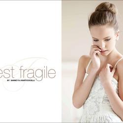 Fragile (1)