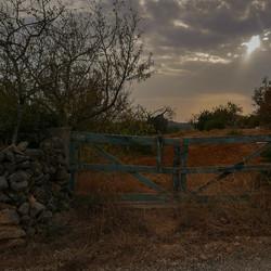 Het blauwe hek