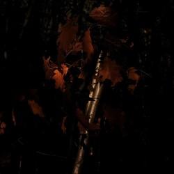 Herfst spelen met licht