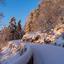 Voetstapjes in de sneeuw