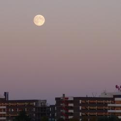 Venlo:  achter mij de zon; voor me de maan
