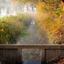 Herfst weerspiegelt