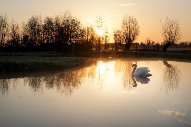 Zonnige ochtend - De zonnige ochtend vanmorgen na een mooie zonsopkomst.