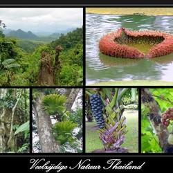 Veelzijdige natuur