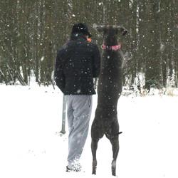 samen wandelen door de sneeuw