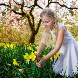 Finally Spring 2