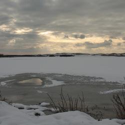 Zwanenwater in wintertooi