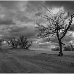 Storm Drunense duinen