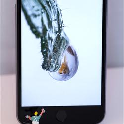 iphone  kuisen