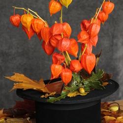 Herfst uit de hoge hoed