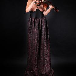 Het laatste viool concert