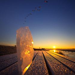 Speels met ijs