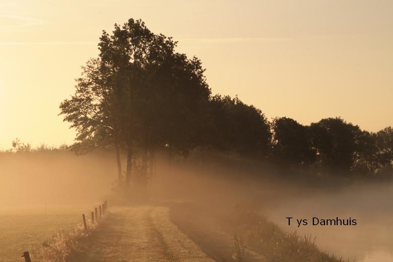 natuur Tys Damhuis  (87) - gemaakt door tys damhuis