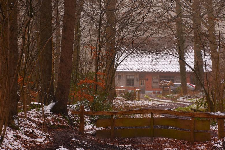 DSC_0572  Boerenstee. - Vanmiddag tijdens de winter wandeling.