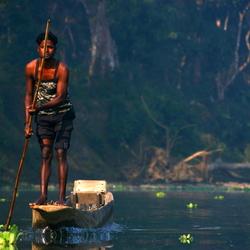 Tegenligger in Chitwan